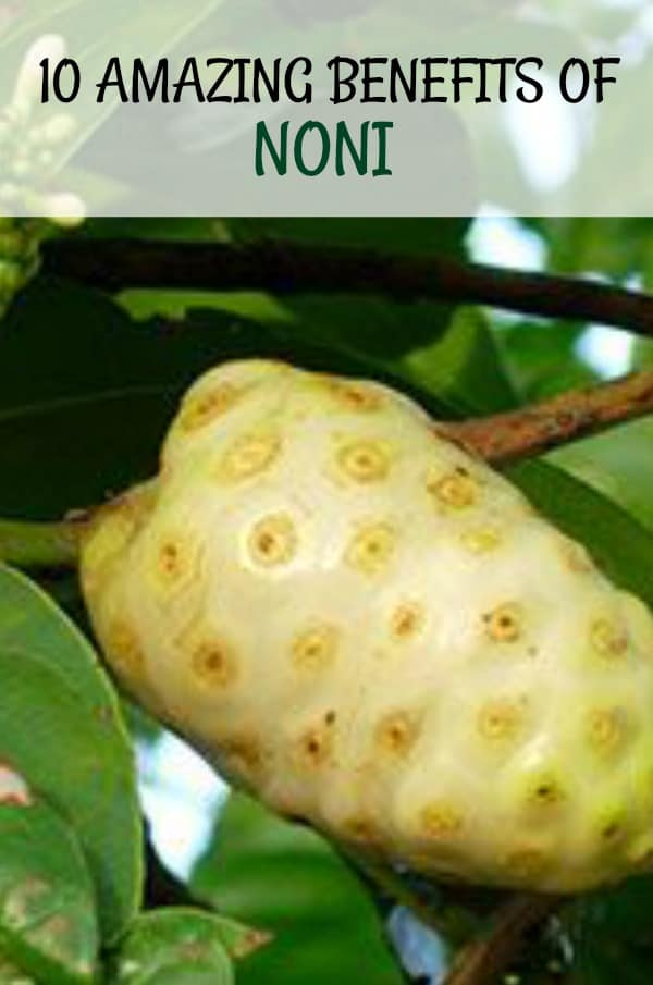 10 Amazing Benefits Of Noni