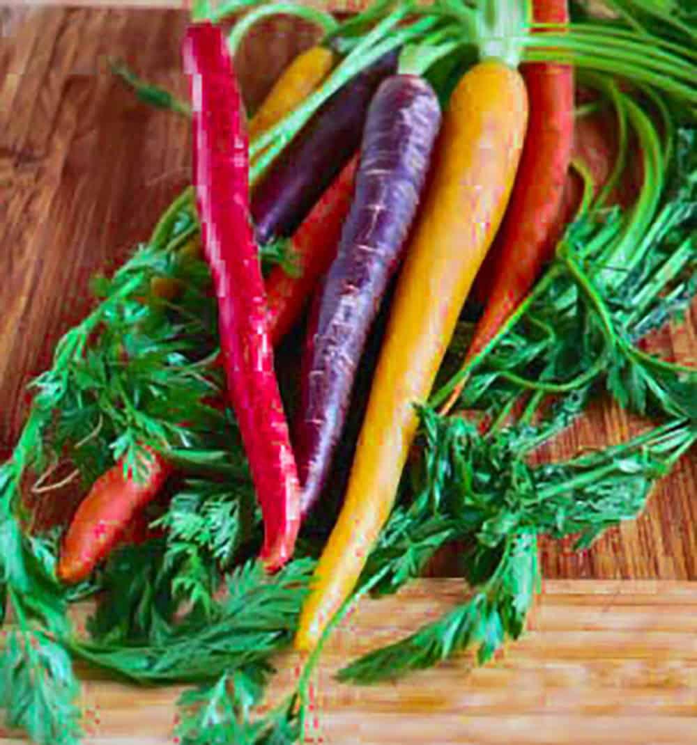 Maple Glazed Carrots Rainbow Carrots
