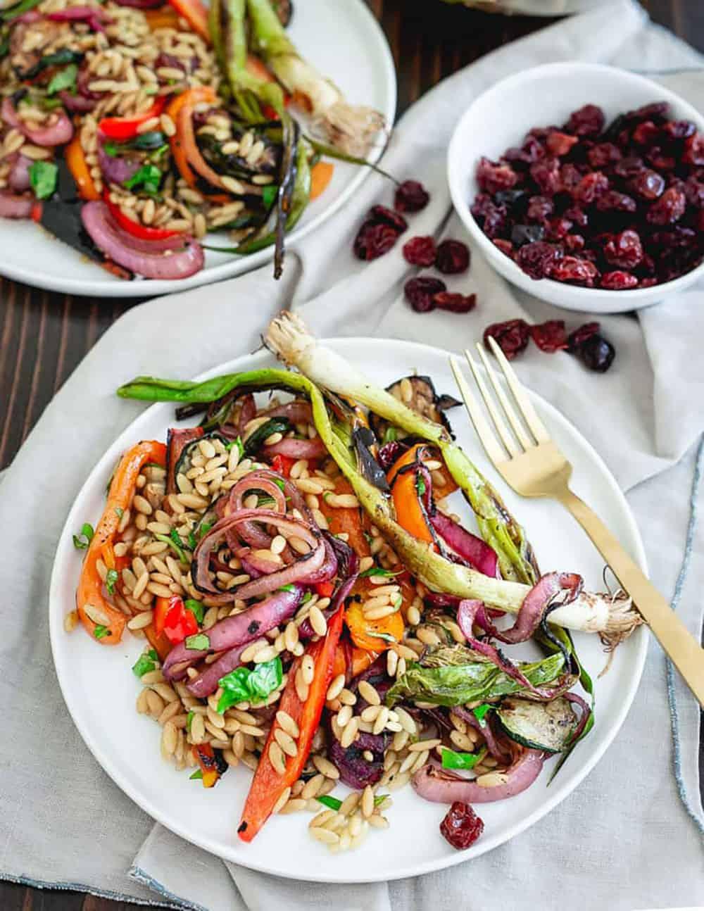 Tart Cherries Balsamic Grilled Summer Vegetable Pasta Salad