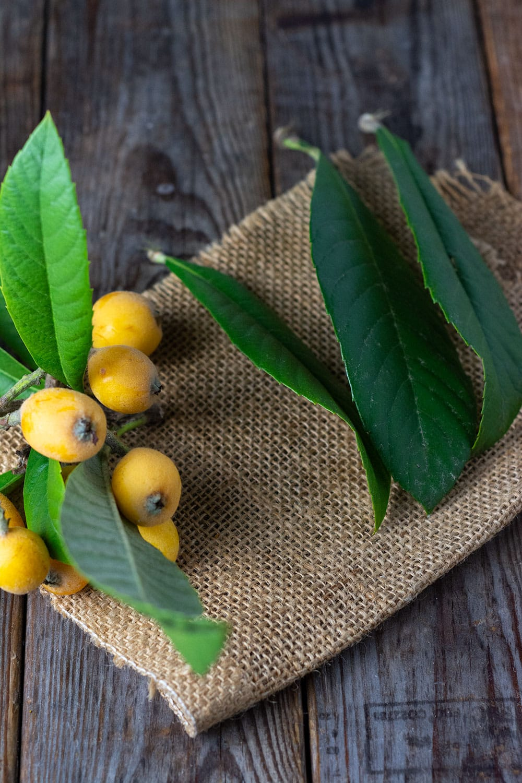 loquat fruit and loquat leaf for making loquat tea on a brown burlap napkin on a wooden background
