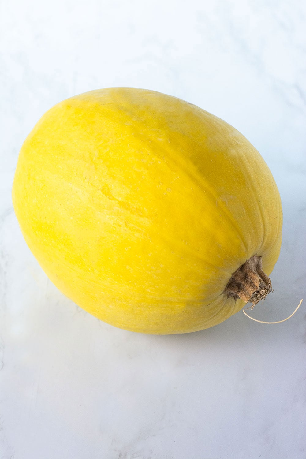 Whole spaghetti squash on a white background