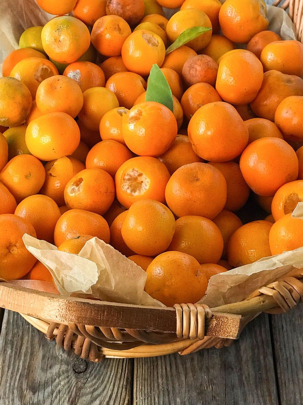 Meiwa kumquat for making marmalade in a basket
