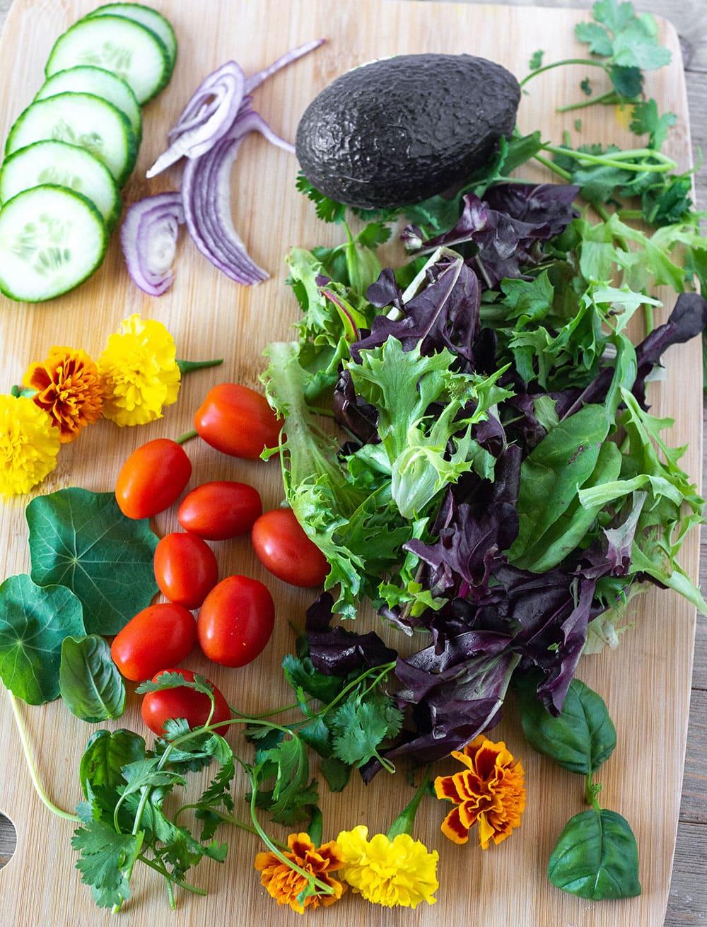 Fresh ingredients for spring mix salad