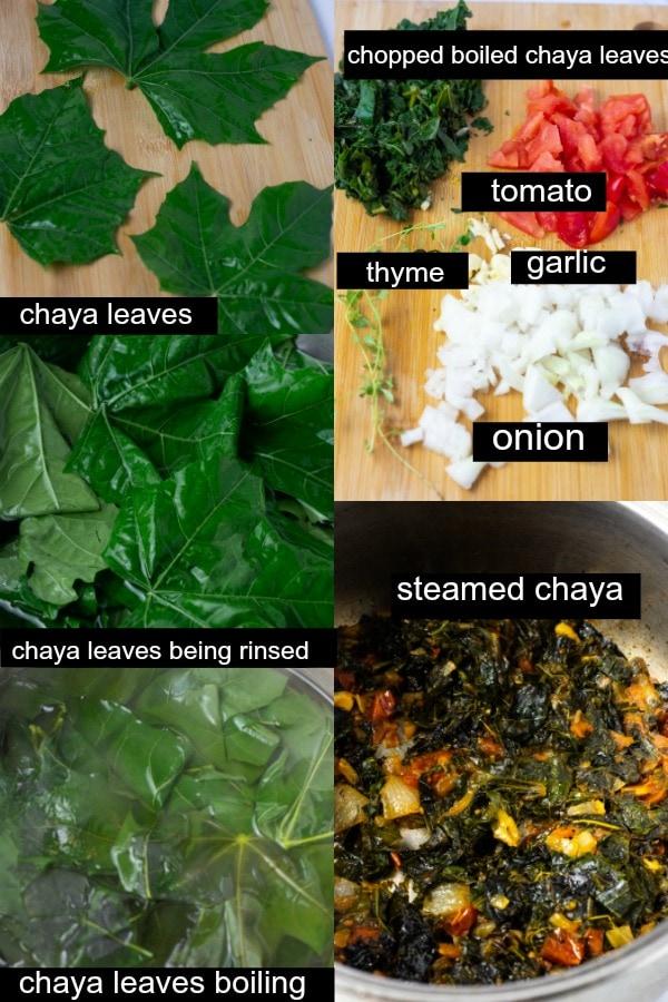 Step by step images of chaya leaves being prepared.