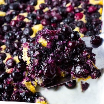 Vegan Gluten-Free Blueberry Cake