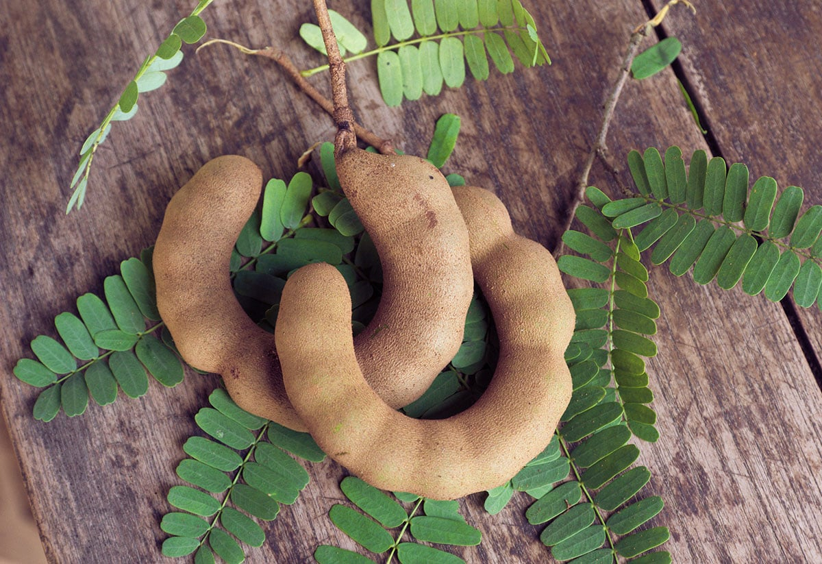 tamarind legume with leaves on a wooden background