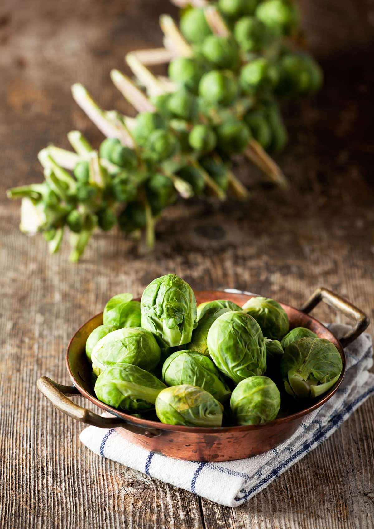 Brussels sprouts on stalk and in bowl