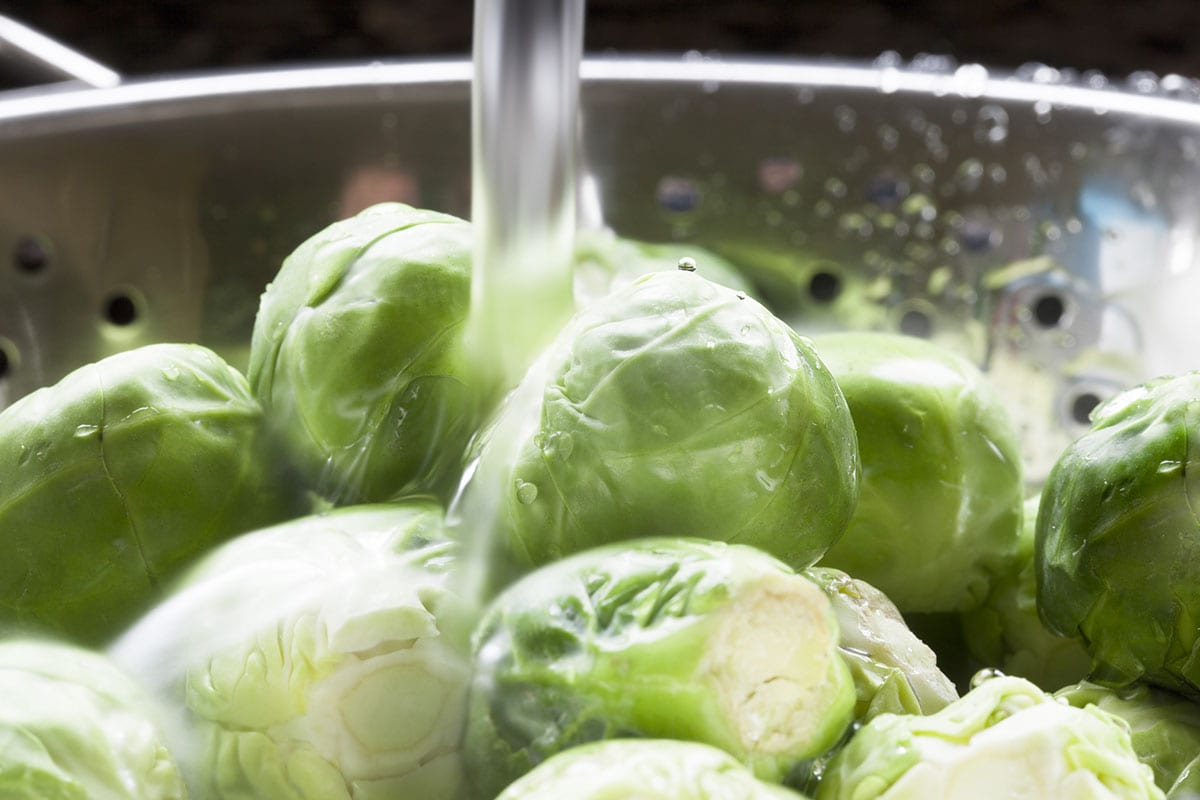 rinsing Brussels sprouts, colander