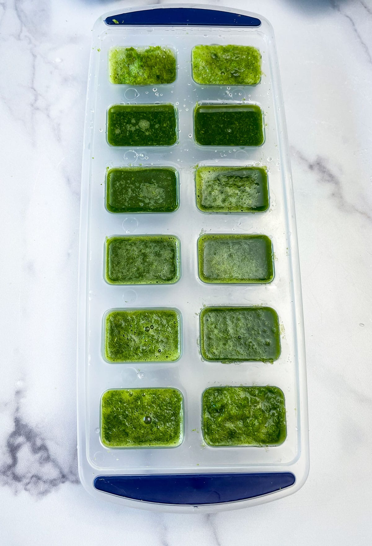 puree kale in ice cube tray on white background