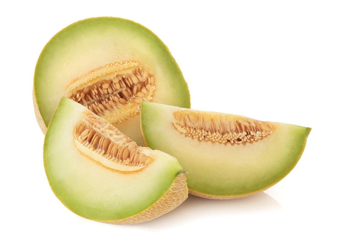 Galia melon on a white background