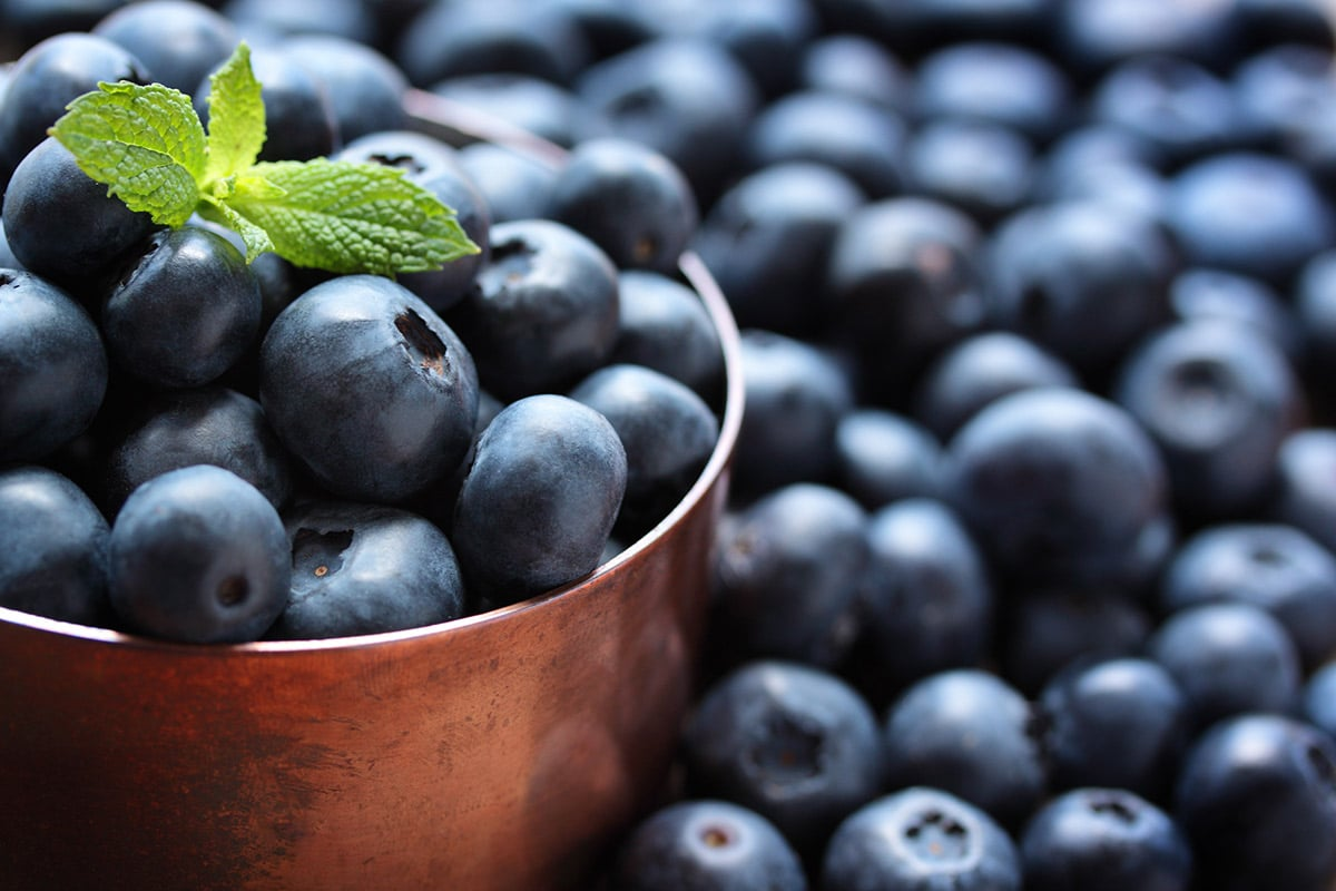 blueberries in a bronze bowl