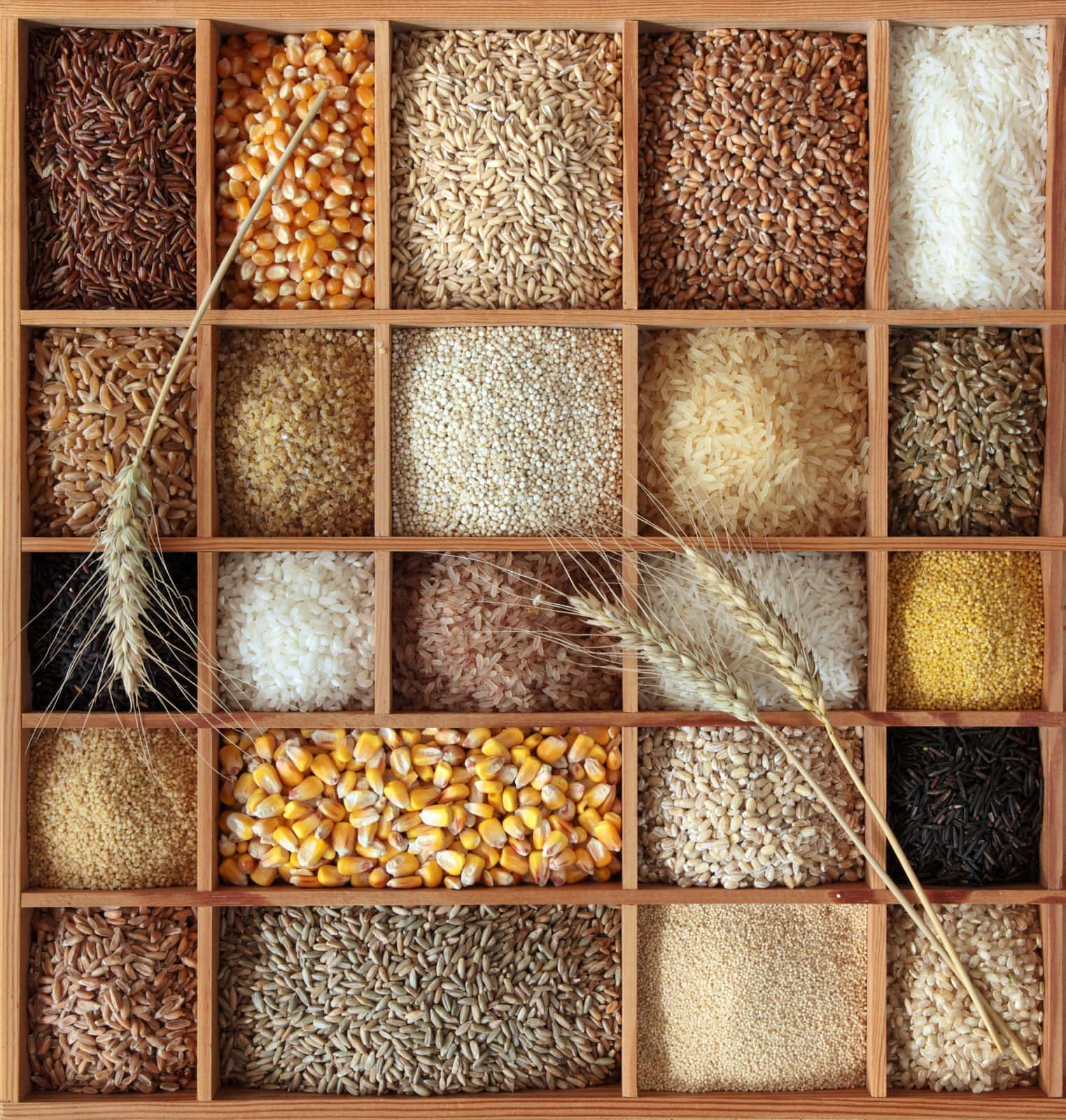 grains and seeds in a wooden compartmented box