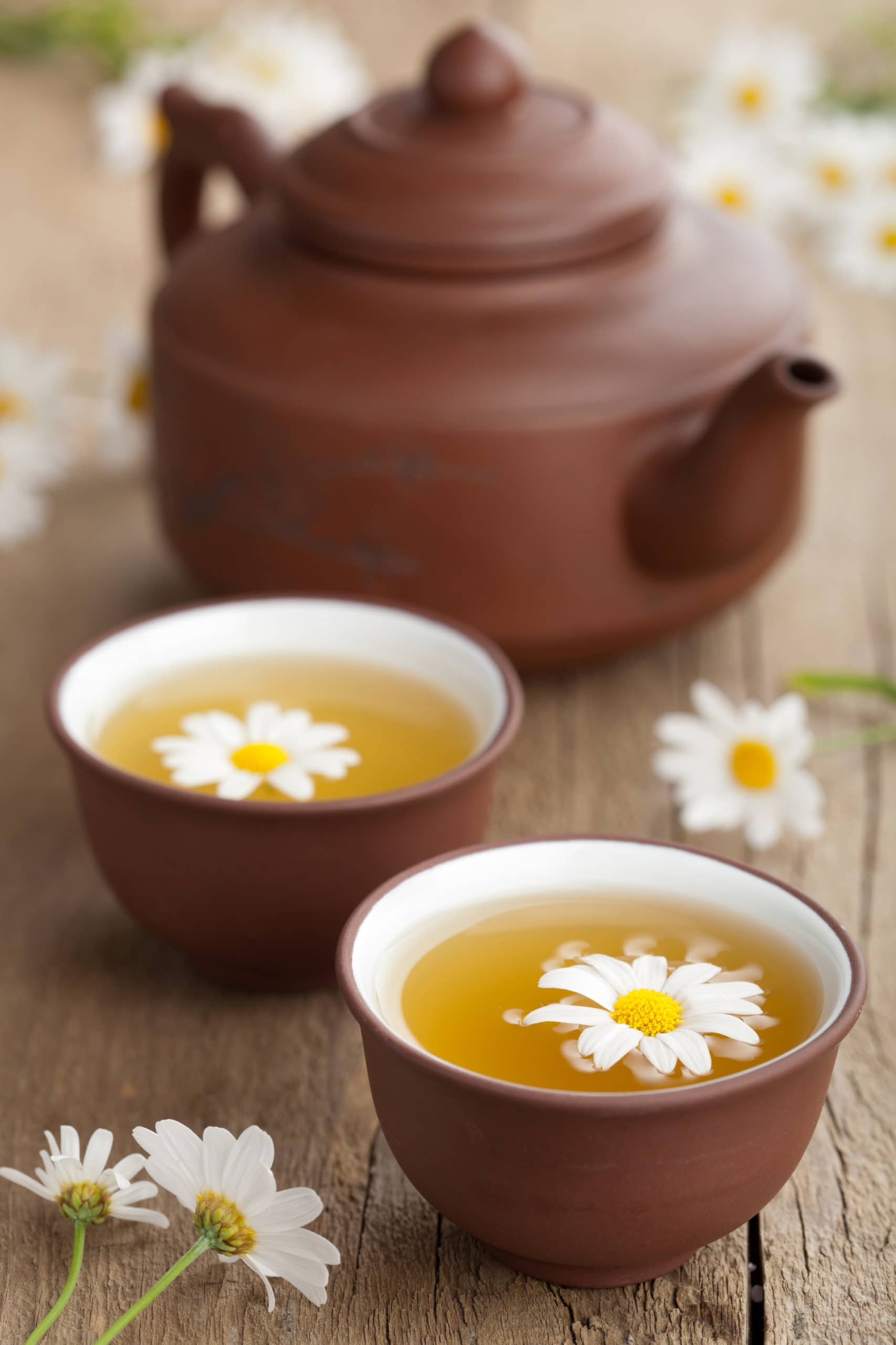 a brown tea pot and two teacups with chamomile tea and chamomile flowers on top