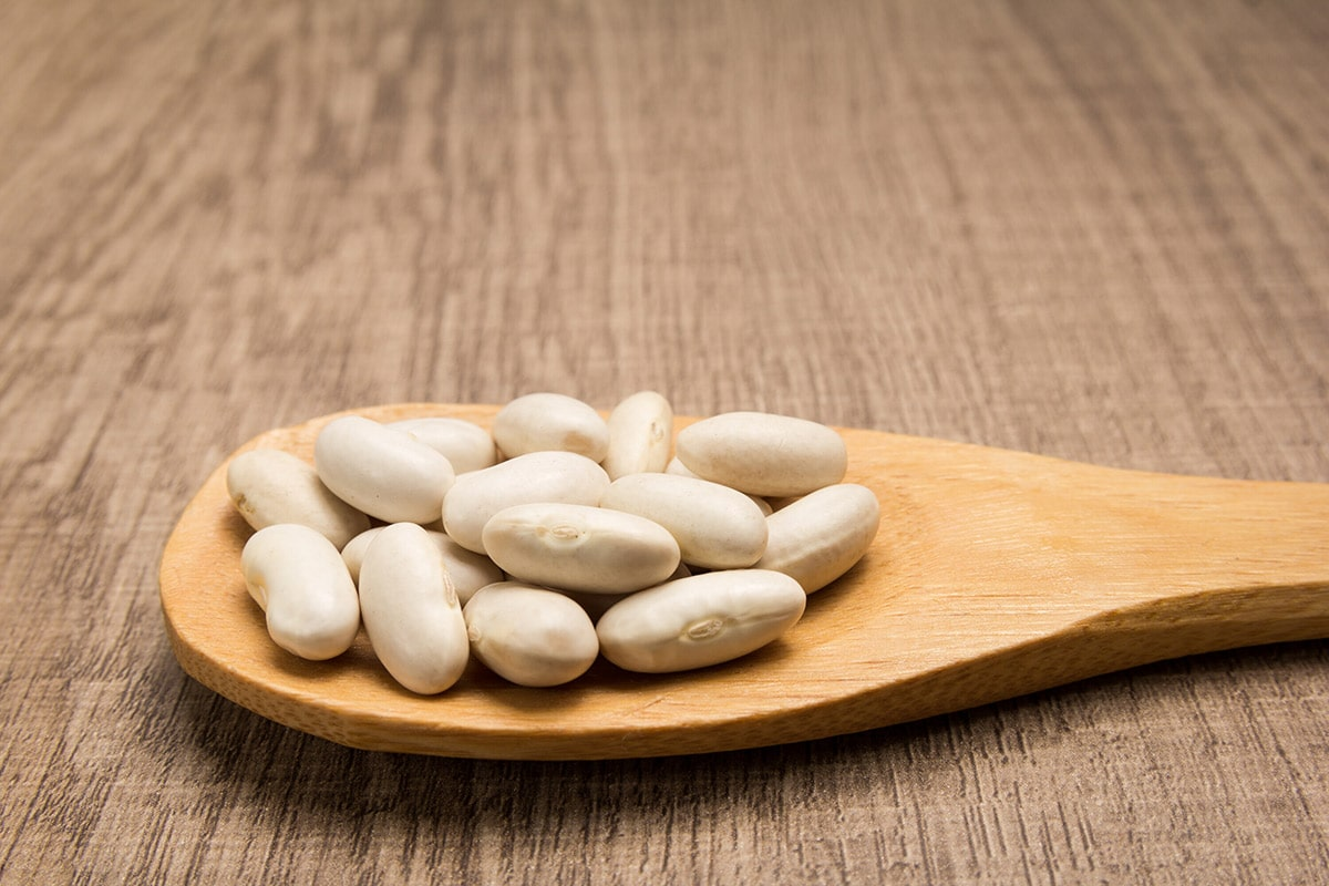 navy beans on a wooden spoon