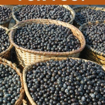 Is Acai Good for You