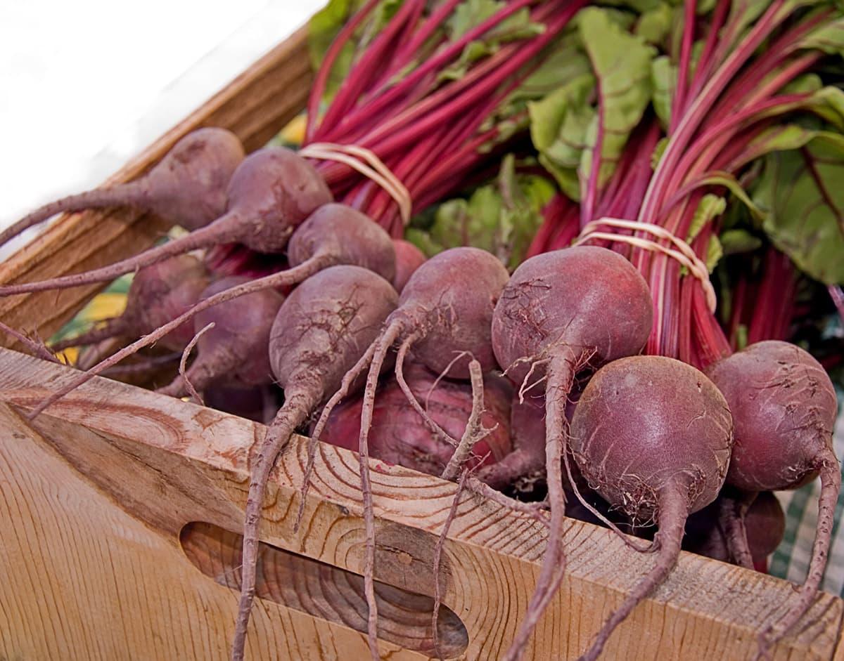beet bundles in a basket