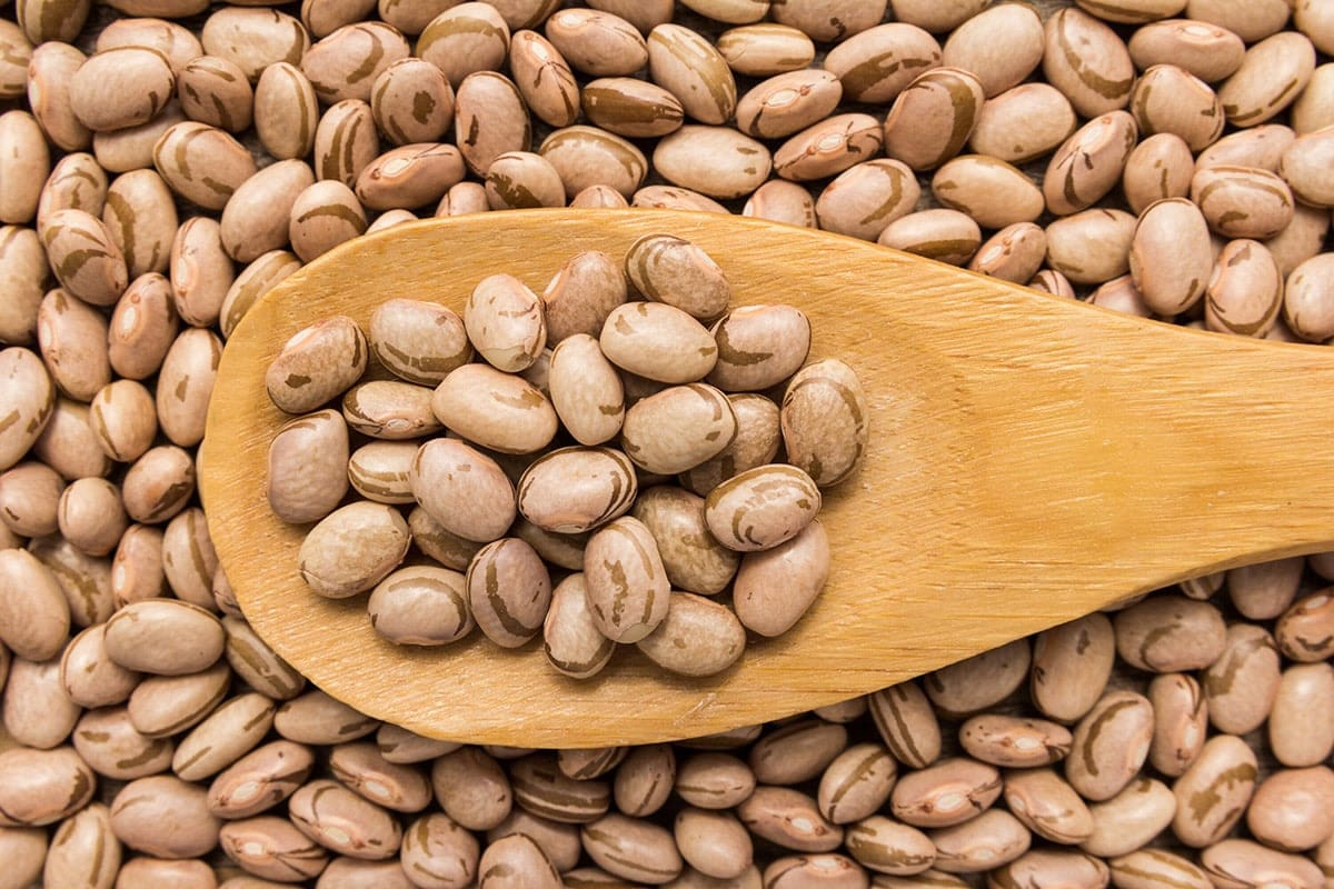 dried pinto beans in wooden spoon