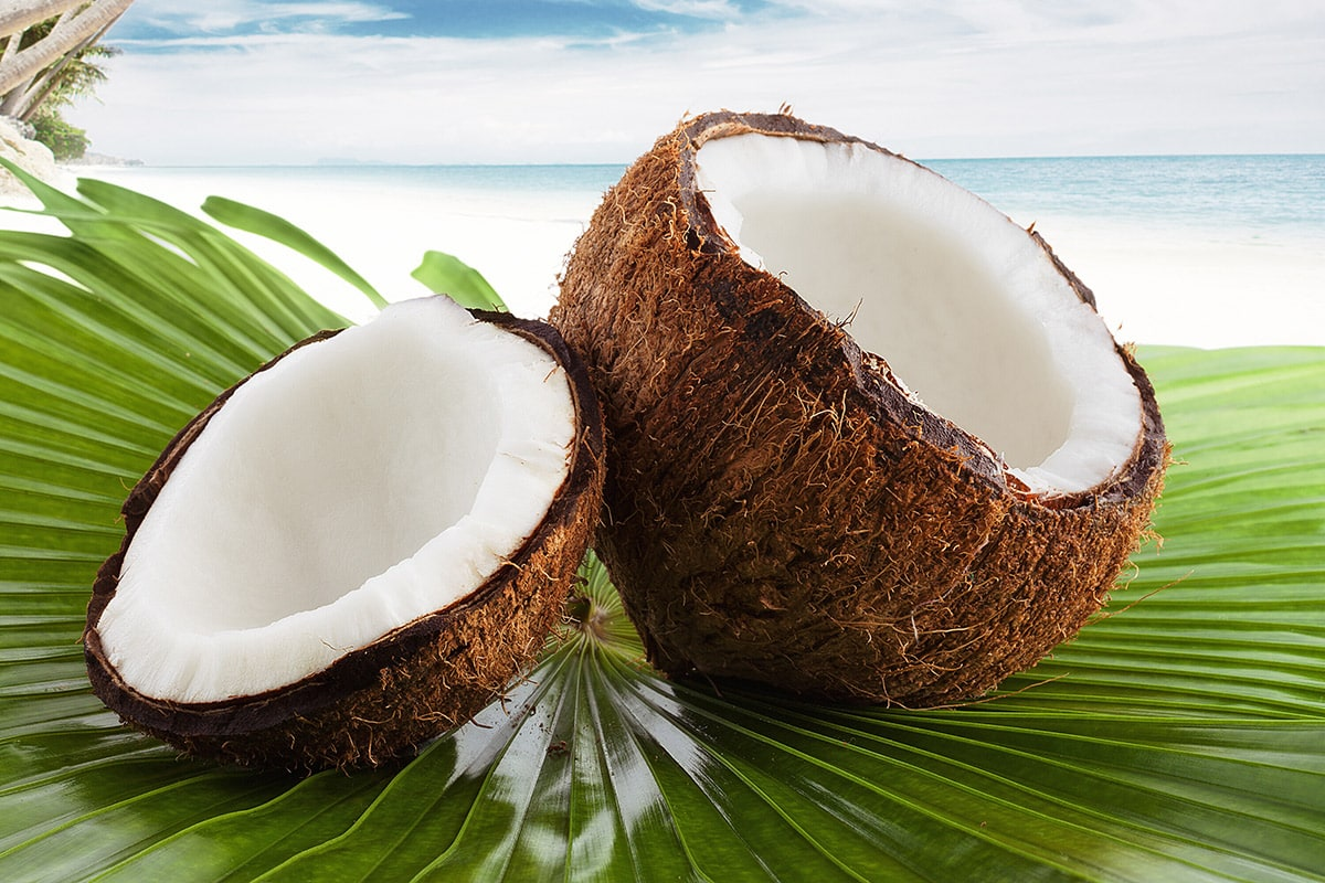 coconut in half on coconut leaves