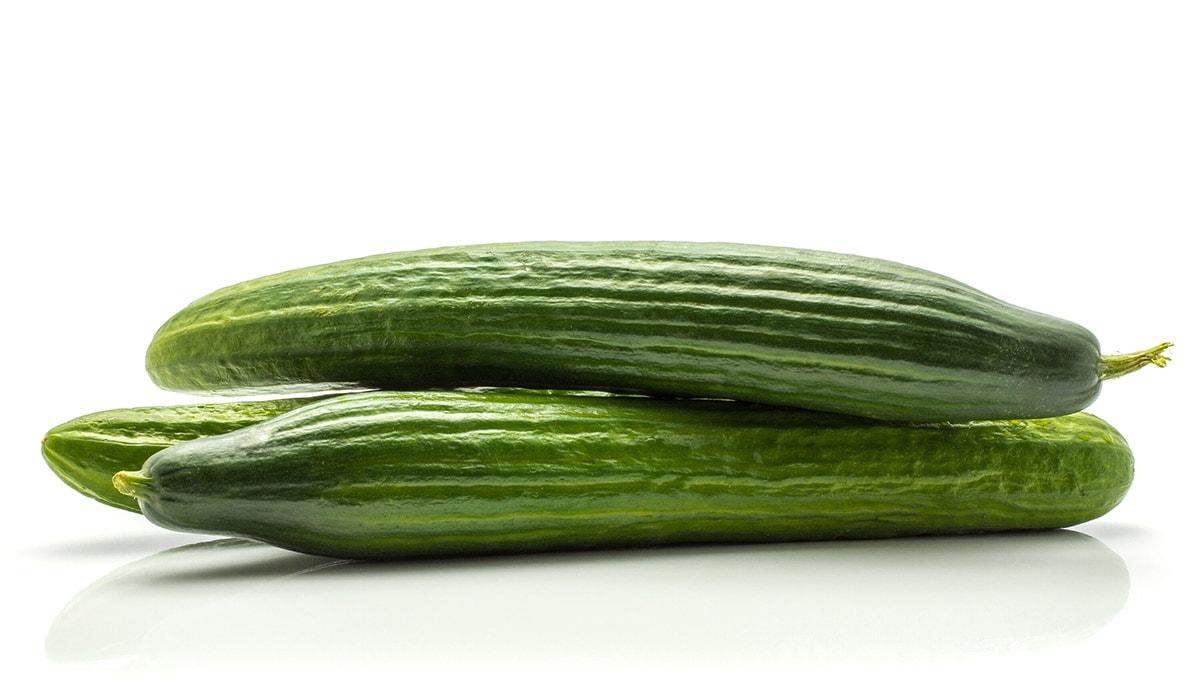 english cucumber on white background