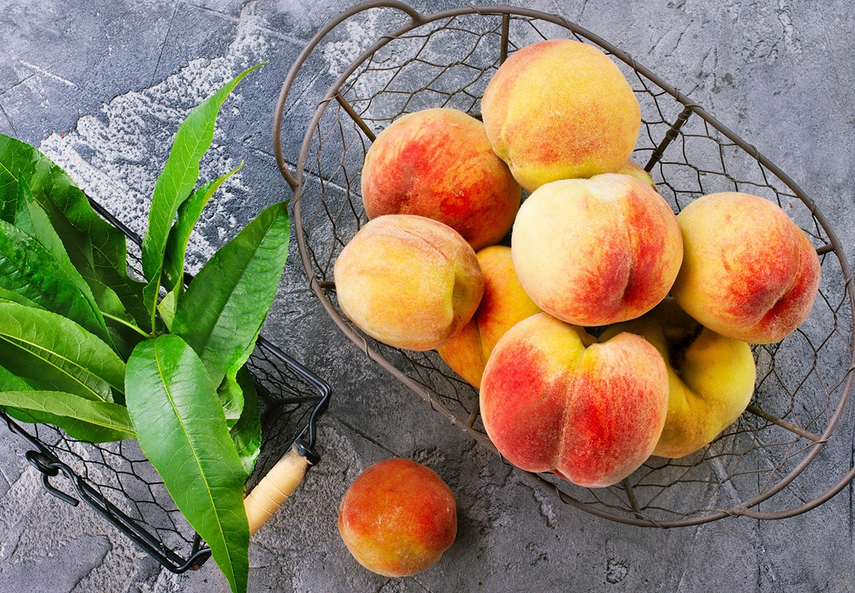 peaches in a basket on a grey background