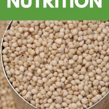 Sorghum Nutrition