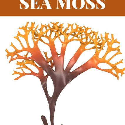 What Is Sea Moss